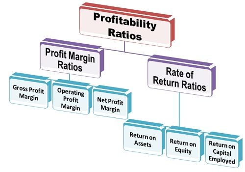 types of profitability ratios